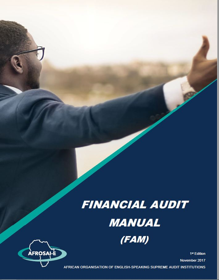 Financial Audit Manual 2017
